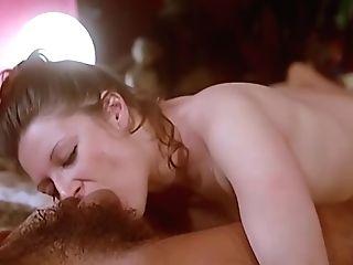 Antique Orgy 82